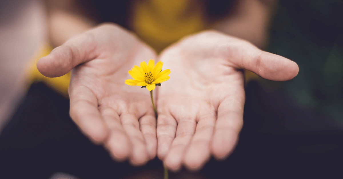 young woman holding a yellow flower between her open palms
