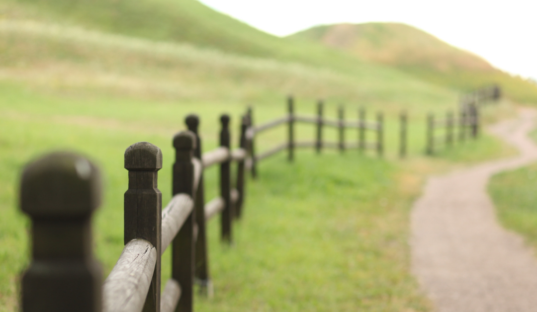 A Fence Around the Law – Safety Net or Beam in Our Eye